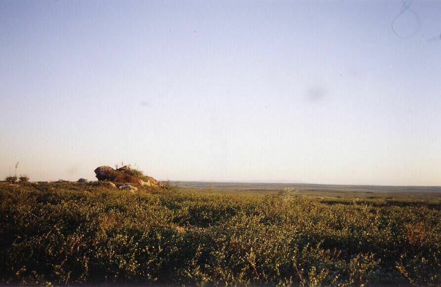 Veiw to the south from the top of Koozkaynt mountain. Photo by Burov-Staskov A.Y.. July 2004